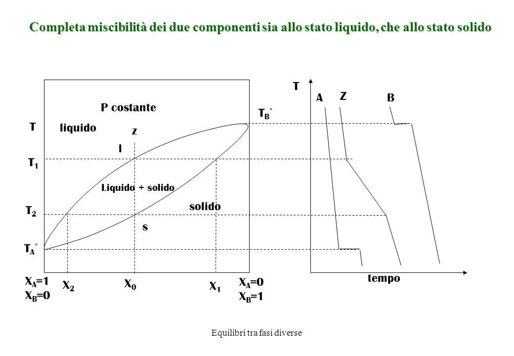 Equilibri tra fasi diverse Completa miscibilità dei due componenti sia allo stato liquido, che allo stato solido P costante T T X A =1 X B =0 X A =0 X B =1 X0X0 z s l T2T2 TA*TA* T1T1 A Z B tempo TB*TB* solido liquido Liquido + solido X2X2 X1X1