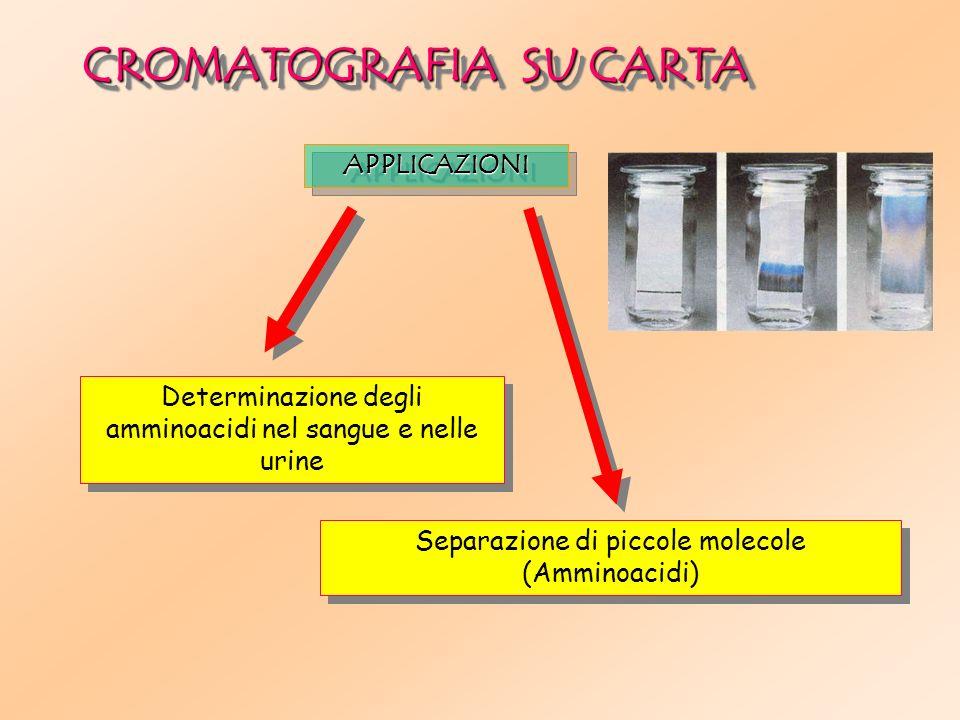 Separazione di piccole molecole (Amminoacidi) Determinazione degli amminoacidi nel sangue e nelle urine CROMATOGRAFIA SU CARTA APPLICAZIONIAPPLICAZIONI