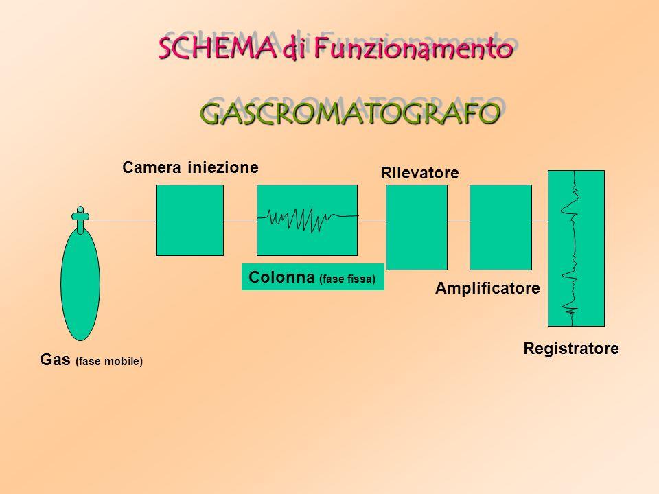 Gas (fase mobile) Camera iniezione Colonna (fase fissa) Rilevatore Amplificatore Registratore SCHEMA di Funzionamento GASCROMATOGRAFOGASCROMATOGRAFO