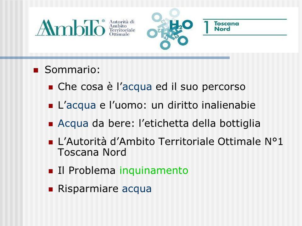 LA.A.T.O 1 Toscana Nord ha applicato la tariffa più economica delle altre Autorità dAmbito Toscane Una tariffa agevolata per luso domestico Sconti per le famiglie più deboli Agevolazioni per le comunità montane.