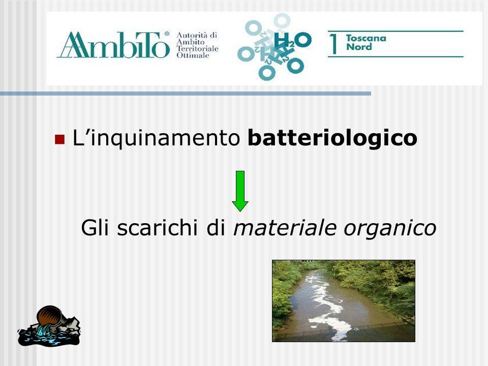 Linquinamento batteriologico Gli scarichi di materiale organico