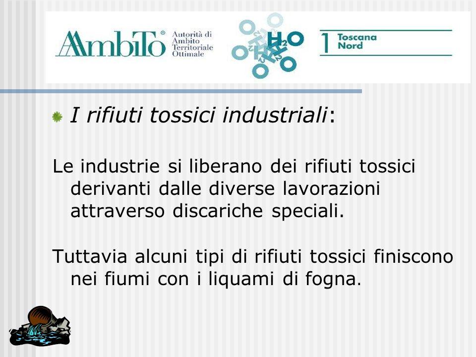 I rifiuti tossici industriali: Le industrie si liberano dei rifiuti tossici derivanti dalle diverse lavorazioni attraverso discariche speciali. Tuttav