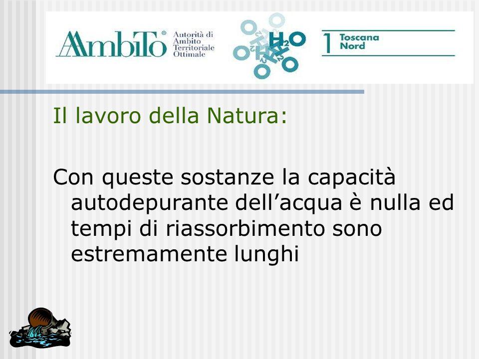 Il lavoro della Natura: Con queste sostanze la capacità autodepurante dellacqua è nulla ed tempi di riassorbimento sono estremamente lunghi