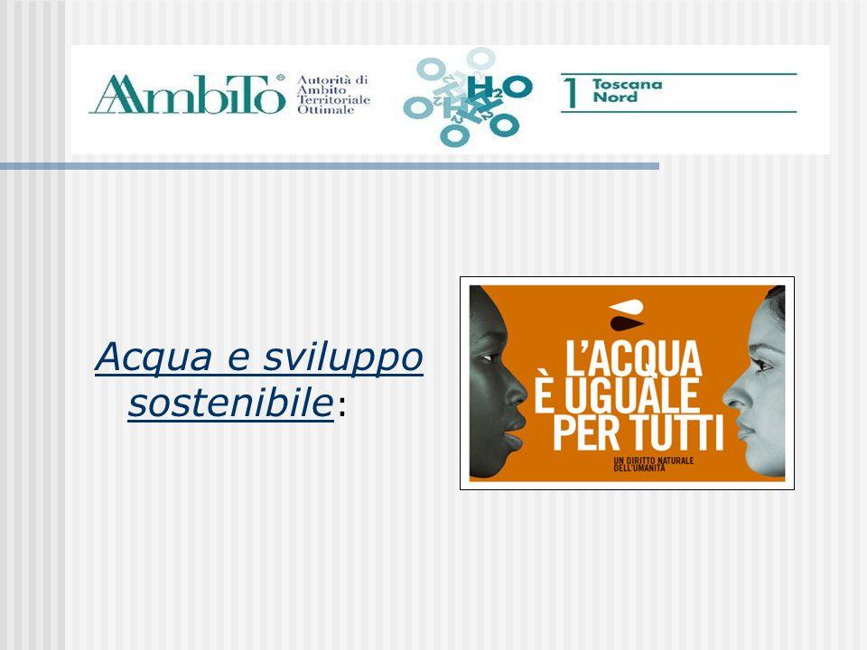 Si occupa dellacqua che arriva nei comuni di 3 Province Lucca Massa Carrara Pistoia LAutorità dAmbito Territoriale Ottimale N° 1 Toscana Nord AATO