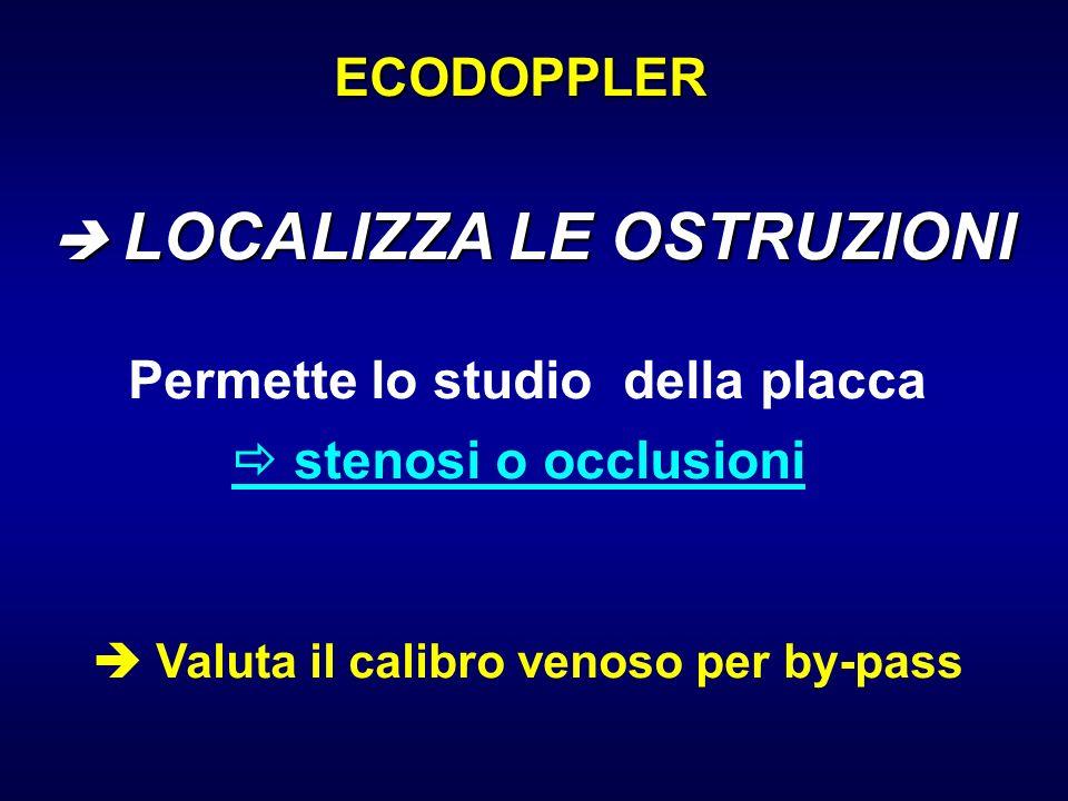 ECODOPPLER Permette lo studio della placca stenosi o occlusioni Valuta il calibro venoso per by-pass LOCALIZZA LE OSTRUZIONI LOCALIZZA LE OSTRUZIONI