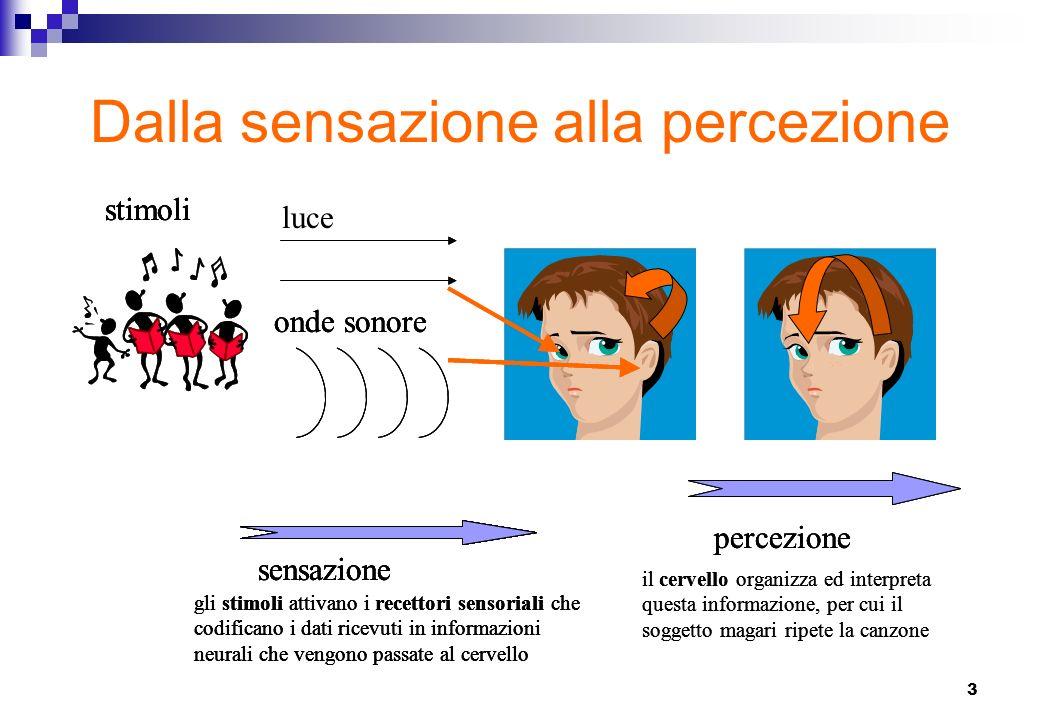 4 Che cosè la sensazione Sensazioni = ci si riferisce al quella esperienza prodotta dalla stimolazione di uno dei cinque organi di senso.