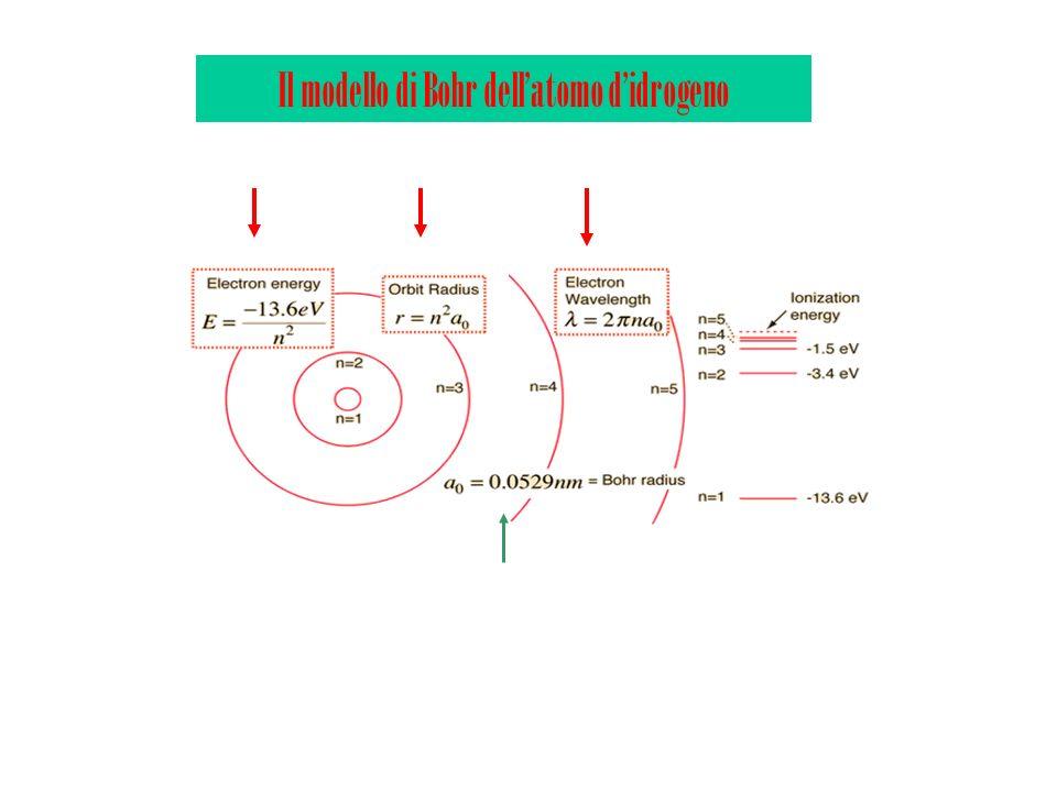 Il modello di Bohr dellatomo didrogeno