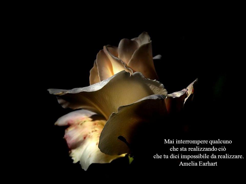 Mai interrompere qualcuno che sta realizzando ciò che tu dici impossibile da realizzare.