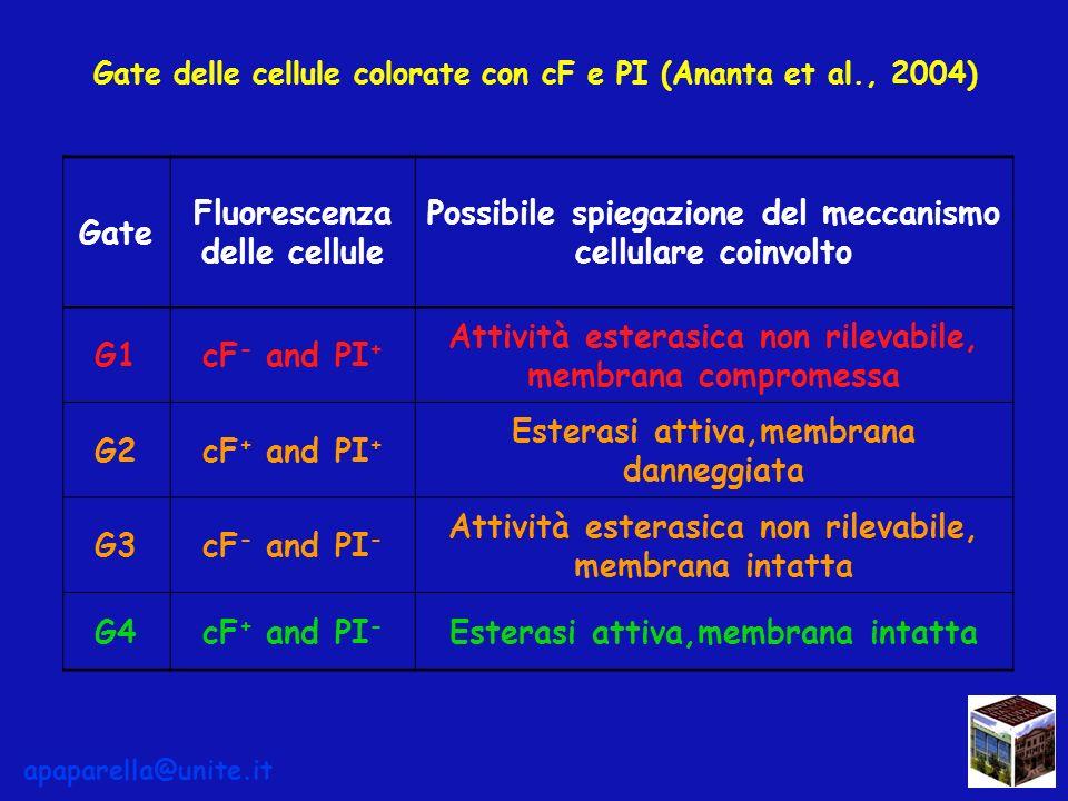 Gate Fluorescenza delle cellule Possibile spiegazione del meccanismo cellulare coinvolto G1cF - and PI + Attività esterasica non rilevabile, membrana compromessa G2cF + and PI + Esterasi attiva,membrana danneggiata G3cF - and PI - Attività esterasica non rilevabile, membrana intatta G4cF + and PI - Esterasi attiva,membrana intatta Gate delle cellule colorate con cF e PI (Ananta et al., 2004) apaparella@unite.it