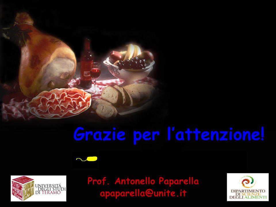 Grazie per lattenzione! Prof. Antonello Paparella apaparella@unite.it