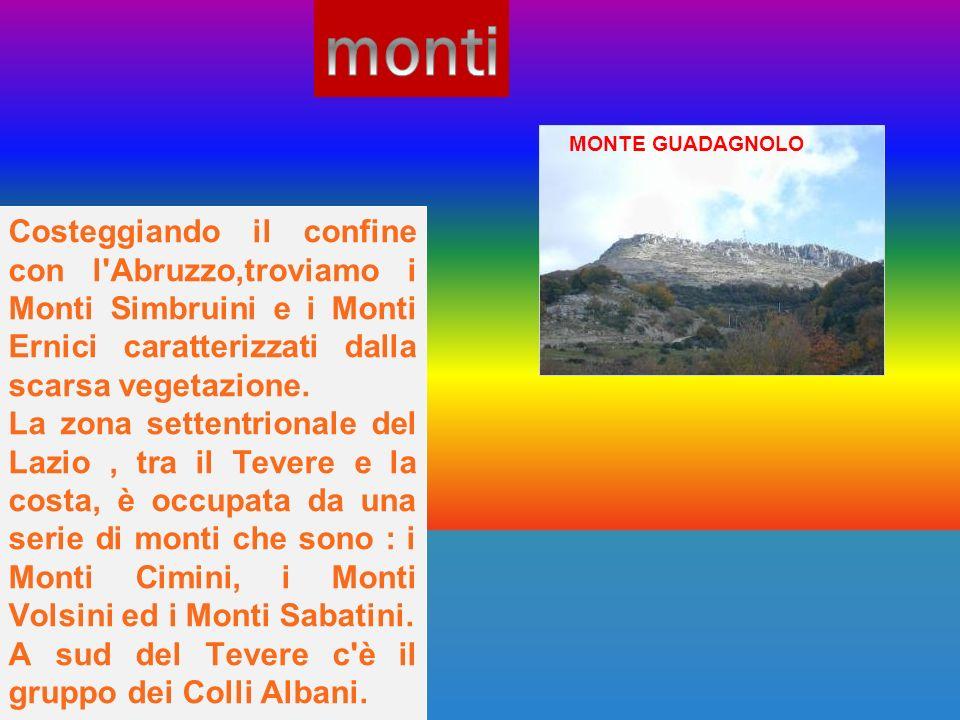 Costeggiando il confine con l'Abruzzo,troviamo i Monti Simbruini e i Monti Ernici caratterizzati dalla scarsa vegetazione. La zona settentrionale del