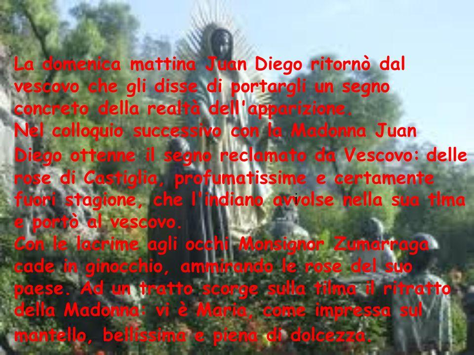 La domenica mattina Juan Diego ritornò dal vescovo che gli disse di portargli un segno concreto della realtà dell'apparizione. Nel colloquio successiv