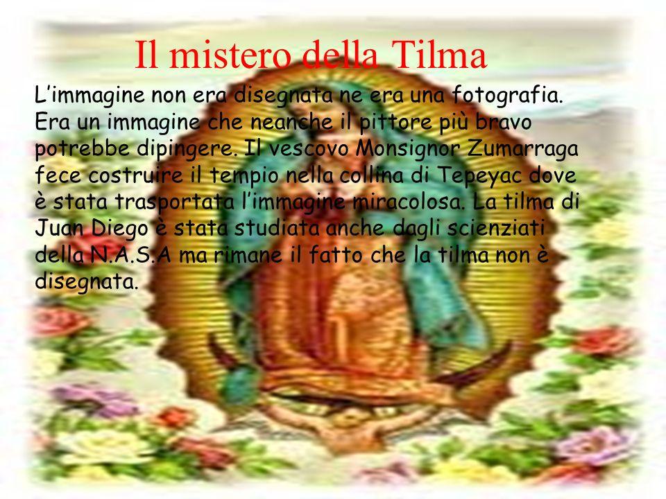 Limmagine non era disegnata ne era una fotografia. Era un immagine che neanche il pittore più bravo potrebbe dipingere. Il vescovo Monsignor Zumarraga