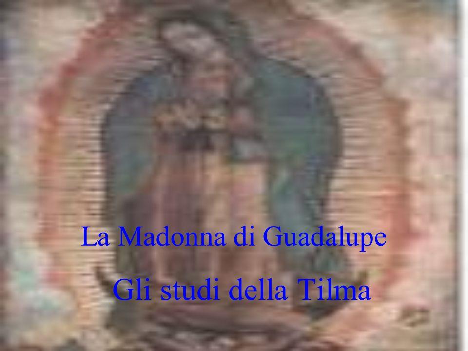 La Madonna di Guadalupe Gli studi della Tilma