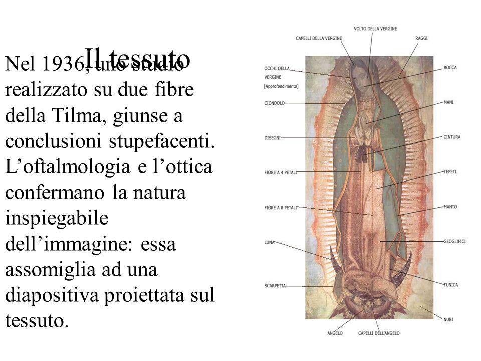 Il tessuto Nel 1936, uno studio realizzato su due fibre della Tilma, giunse a conclusioni stupefacenti. Loftalmologia e lottica confermano la natura i
