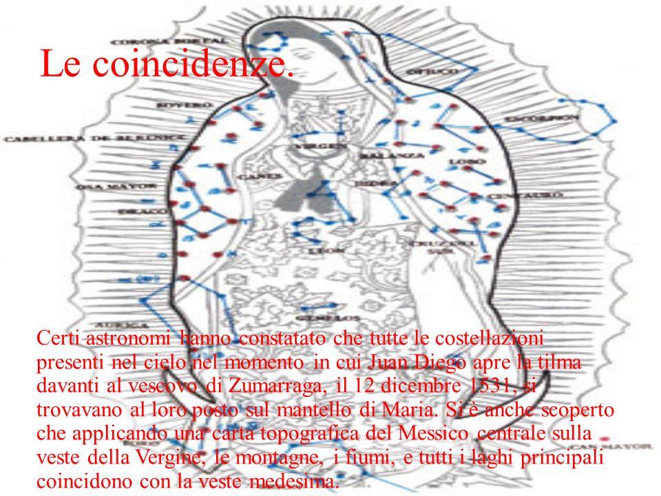 Le coincidenze. Certi astronomi hanno constatato che tutte le costellazioni presenti nel cielo nel momento in cui Juan Diego apre la tilma davanti al
