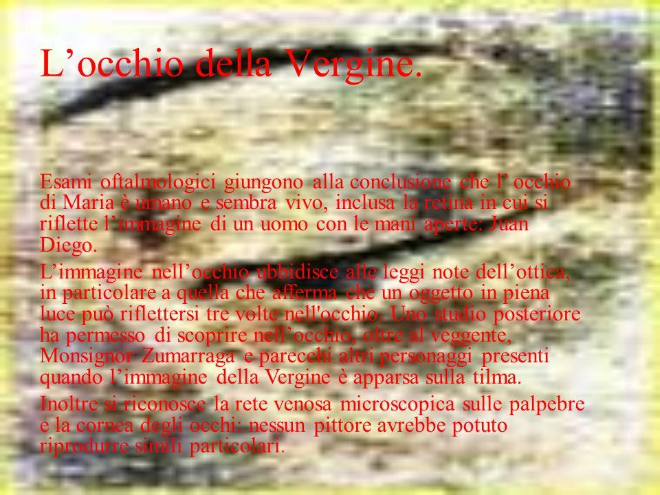 Locchio della Vergine. Esami oftalmologici giungono alla conclusione che l occhio di Maria è umano e sembra vivo, inclusa la retina in cui si riflette