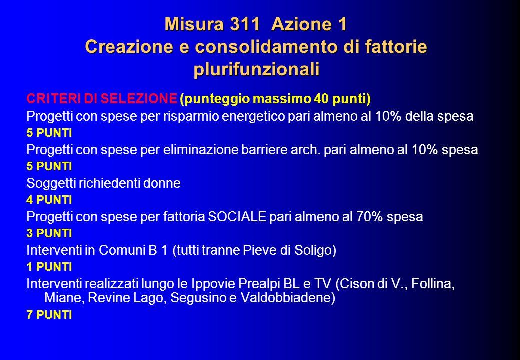 Misura 311 Azione 1 Creazione e consolidamento di fattorie plurifunzionali CRITERI DI SELEZIONE (punteggio massimo 40 punti) Progetti con spese per ri