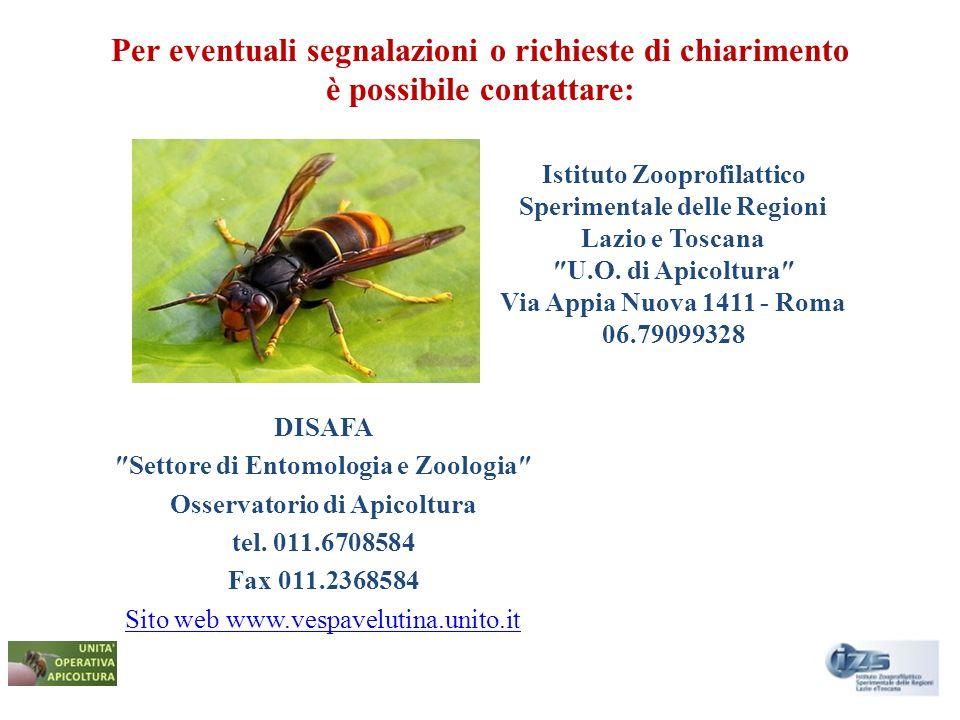 Per eventuali segnalazioni o richieste di chiarimento è possibile contattare: DISAFA Settore di Entomologia e Zoologia Osservatorio di Apicoltura tel.