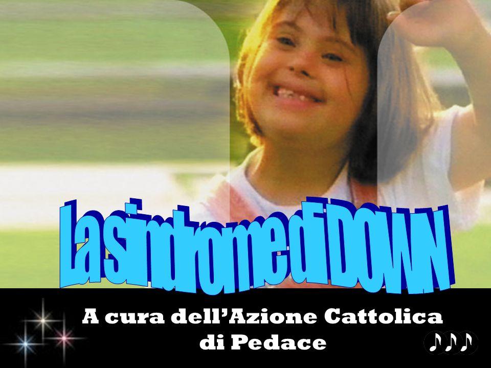 A cura dellAzione Cattolica di Pedace