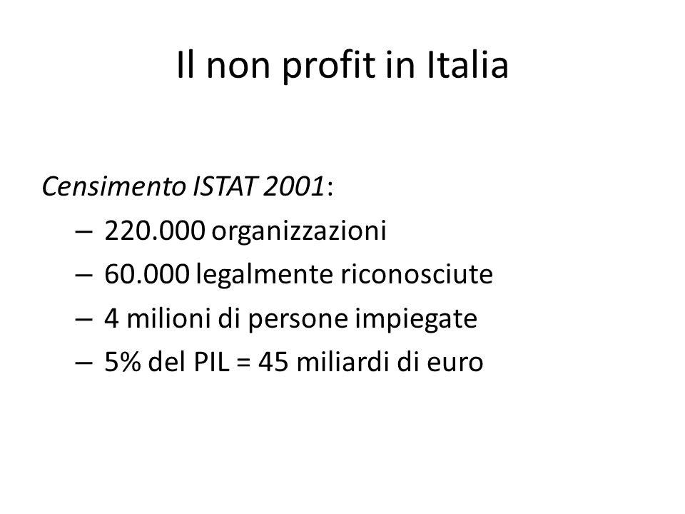 Censimento ISTAT 2001: – 220.000 organizzazioni – 60.000 legalmente riconosciute – 4 milioni di persone impiegate – 5% del PIL = 45 miliardi di euro I