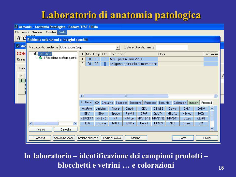 18 Laboratorio di anatomia patologica In laboratorio – identificazione dei campioni prodotti – blocchetti e vetrini … e colorazioni