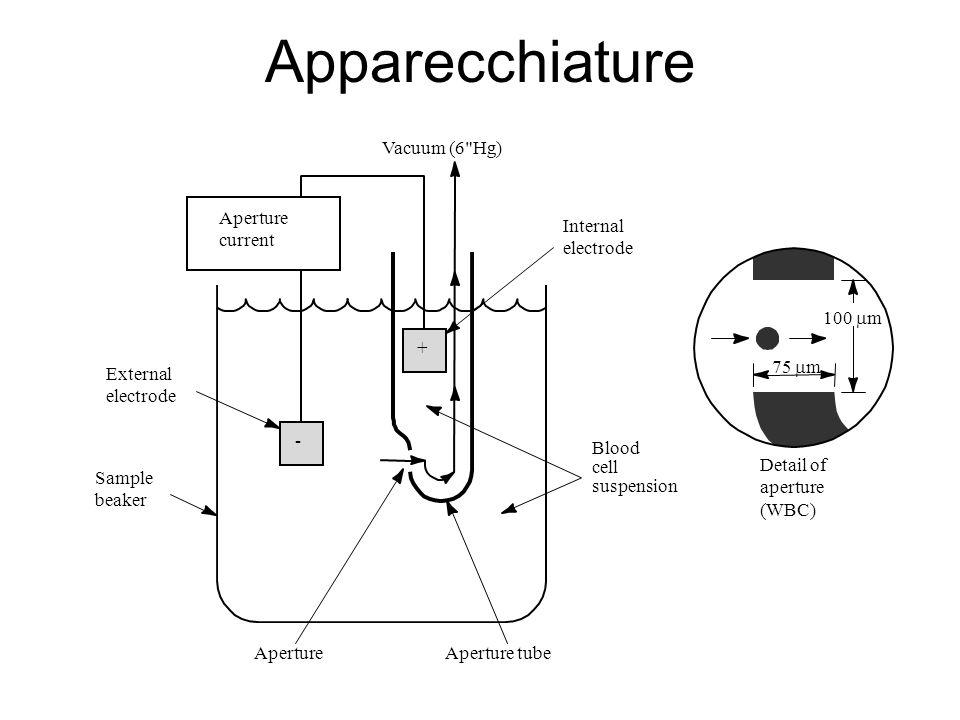 Apparecchiature Internal electrode Blood cell suspension Aperture tube Detail of aperture (WBC) Aperture Sample beaker External electrode Vacuum (6 Hg) + - Aperture current 100 m 75 m