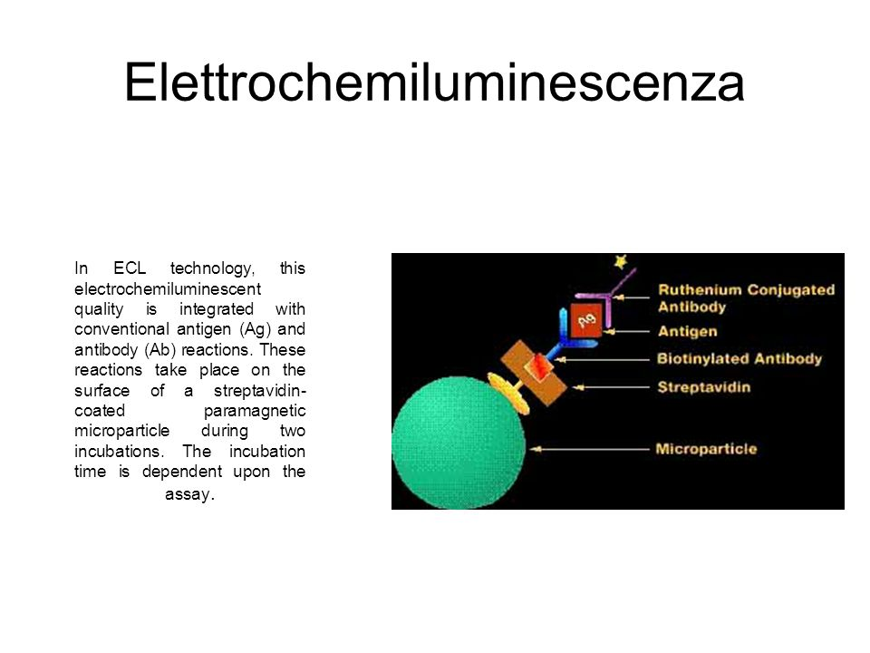 Elettrochemiluminescenza In ECL technology, this electrochemiluminescent quality is integrated with conventional antigen (Ag) and antibody (Ab) reacti