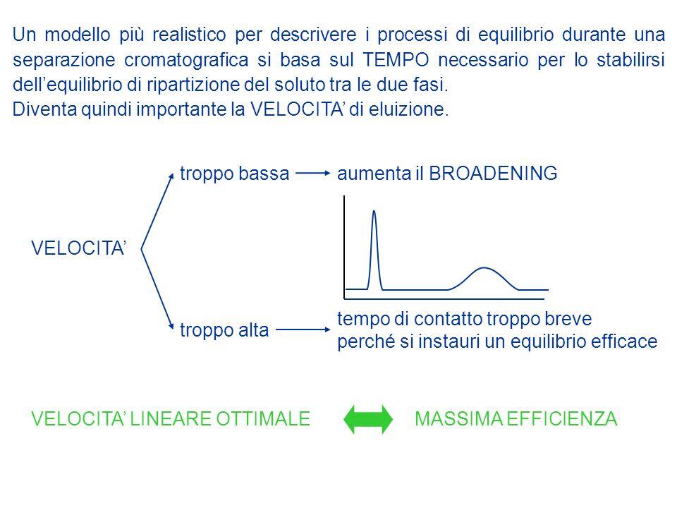 Un modello più realistico per descrivere i processi di equilibrio durante una separazione cromatografica si basa sul TEMPO necessario per lo stabilirs