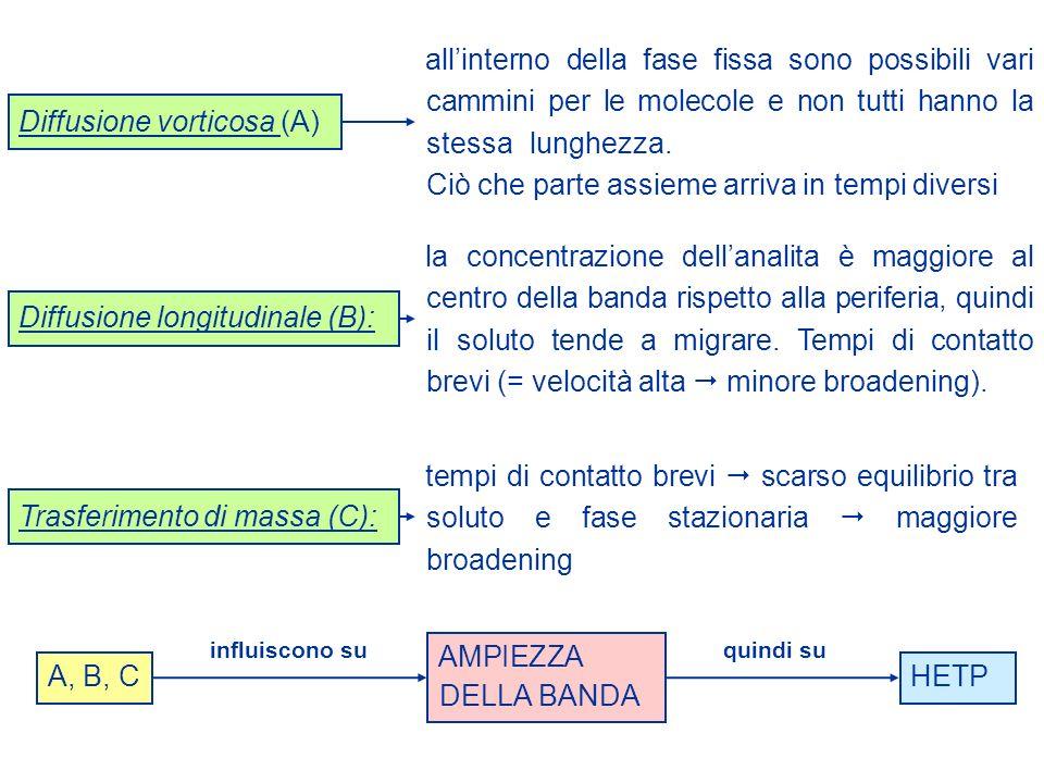Diffusione vorticosa (A) Diffusione longitudinale (B): Trasferimento di massa (C): A, B, C influiscono suquindi su AMPIEZZA DELLA BANDA HETP allintern