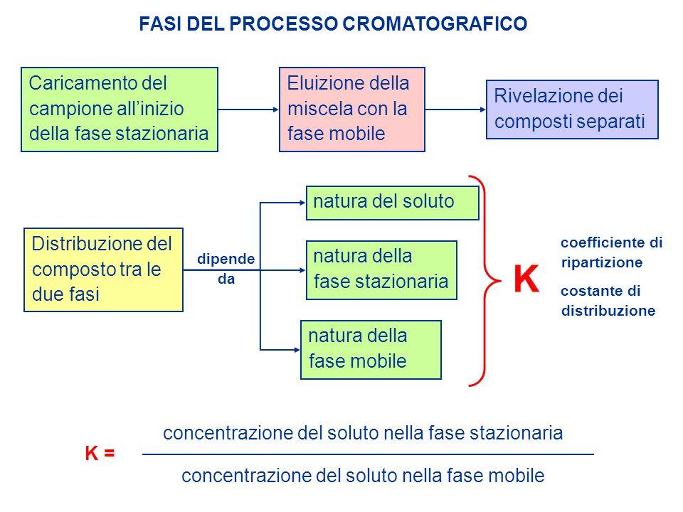 FASI DEL PROCESSO CROMATOGRAFICO Caricamento del campione allinizio della fase stazionaria Eluizione della miscela con la fase mobile Rivelazione dei
