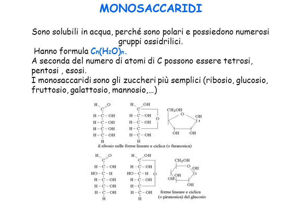 MONOSACCARIDI Sono solubili in acqua, perché sono polari e possiedono numerosi gruppi ossidrilici. Hanno formula C n (H 2 O) n. A seconda del numero d