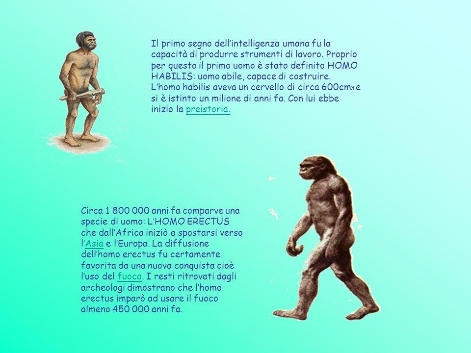 Il primo segno dellintelligenza umana fu la capacità di produrre strumenti di lavoro. Proprio per questo il primo uomo è stato definito HOMO HABILIS: