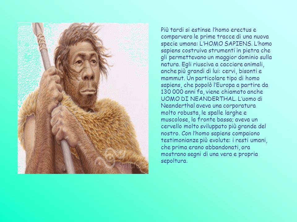 Più tardi si estinse lhomo erectus e comparvero le prime tracce di una nuova specie umana: LHOMO SAPIENS. Lhomo sapiens costruiva strumenti in pietra