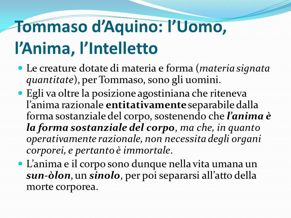 Tommaso dAquino: lUomo, lAnima, lIntelletto Le creature dotate di materia e forma (materia signata quantitate), per Tommaso, sono gli uomini. Egli va