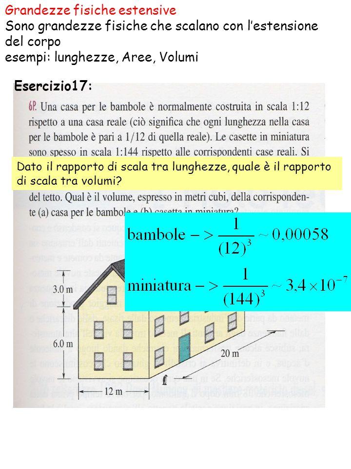 Esercizio17: Grandezze fisiche estensive Sono grandezze fisiche che scalano con lestensione del corpo esempi: lunghezze, Aree, Volumi Dato il rapporto di scala tra lunghezze, quale è il rapporto di scala tra volumi?