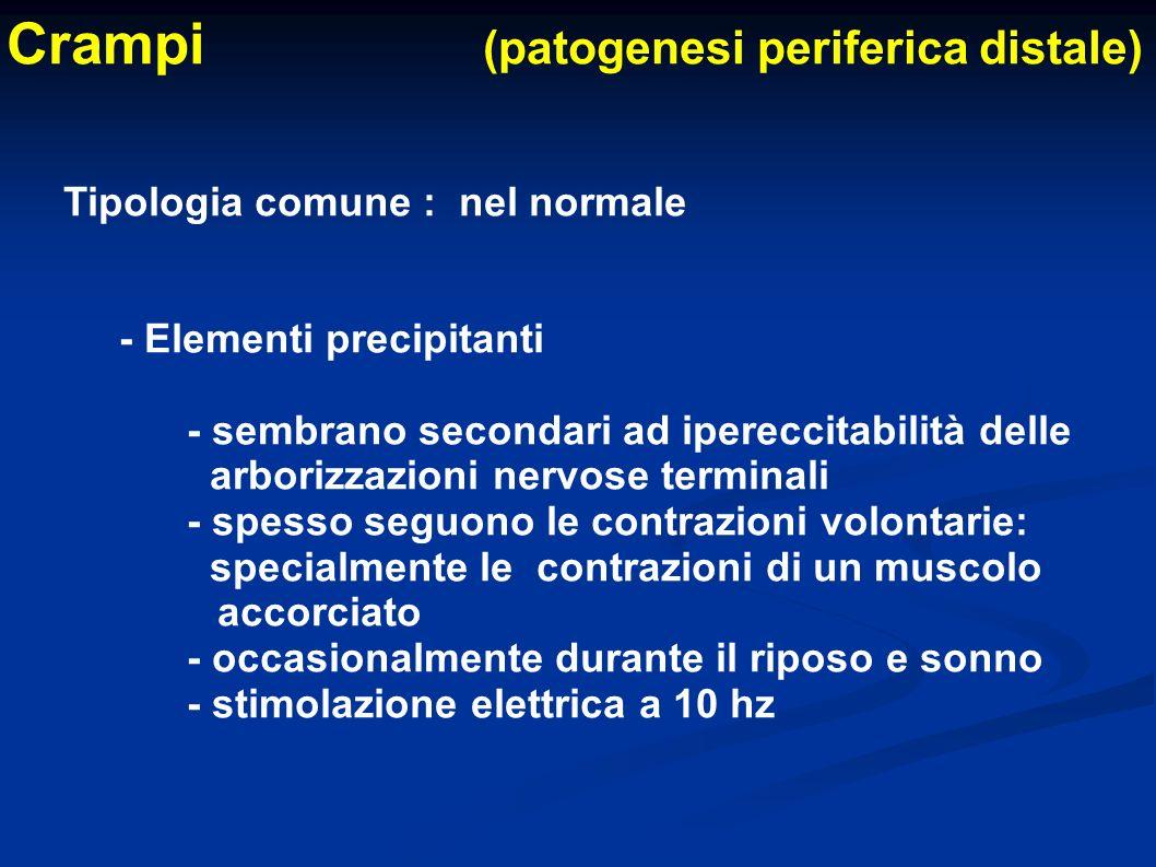Crampi (patogenesi periferica distale) Tipologia comune : nel normale - Elementi precipitanti - sembrano secondari ad ipereccitabilità delle arborizza