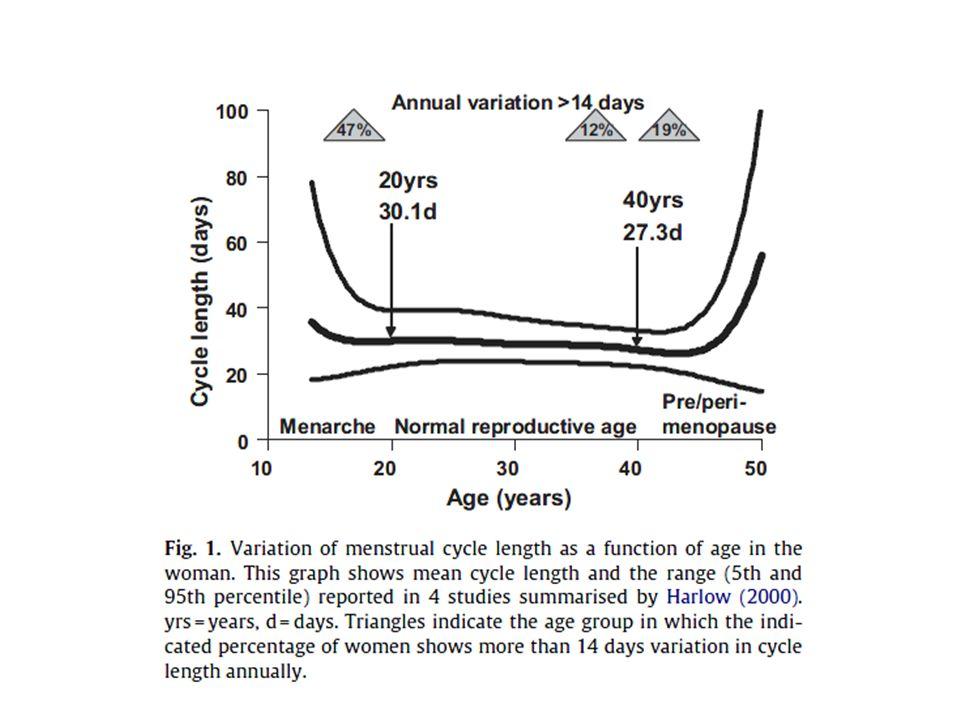 1)Morfogenesi della ghiandola mammaria: Laccrescimento dei dotti della ghiandola mammaria dipende dalla presenza dei recettori ER in quanto non avviene in topi knockout per questo recettore.