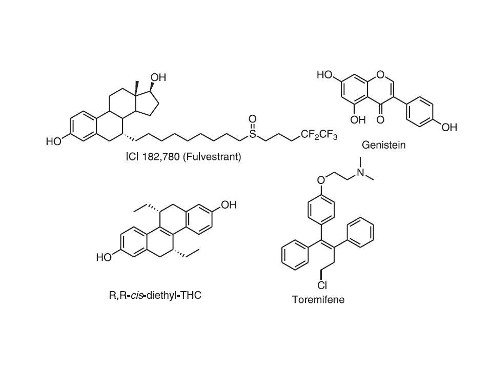 Receptor Actions in Cells (B. Katzenellenbogen et al. Recent Prog. Horm. Res.,2000)