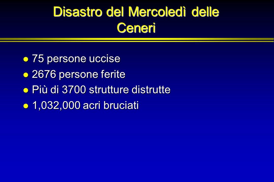 Disastro del Mercoledì delle Ceneri 75 persone uccise 75 persone uccise 2676 persone ferite 2676 persone ferite Più di 3700 strutture distrutte Più di