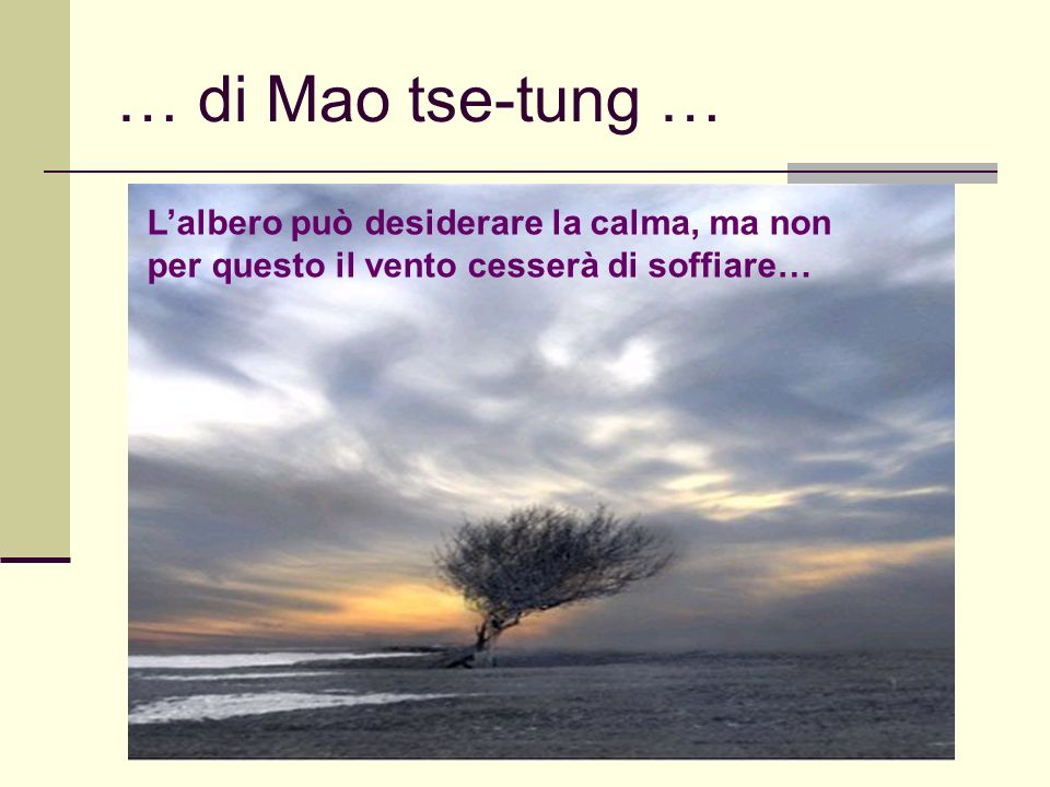 Giovanni Cominelli, 4 marzo 2008 … di Mao tse-tung … Lalbero può desiderare la calma, ma non per questo il vento cesserà di soffiare…