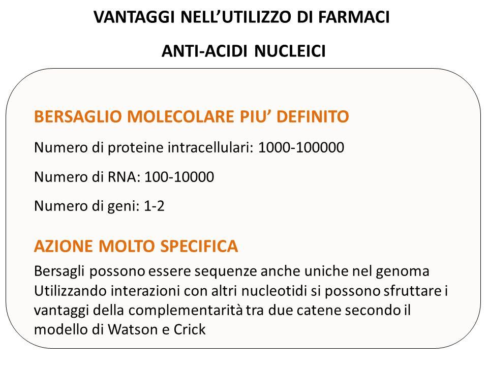 VANTAGGI NELLUTILIZZO DI FARMACI ANTI-ACIDI NUCLEICI BERSAGLIO MOLECOLARE PIU DEFINITO Numero di proteine intracellulari: 1000-100000 Numero di RNA: 1