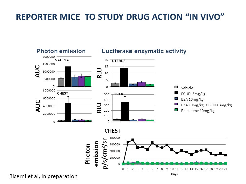 REPORTER MICE TO STUDY DRUG ACTION IN VIVO VAGINA CHEST Vehicle PCUD 3mg/kg BZA 10mg/kg BZA 10mg/kg + PCUD 3mg/kg Raloxifene 10mg/kg Luciferase enzymatic activityPhoton emission Biserni et al, in preparation