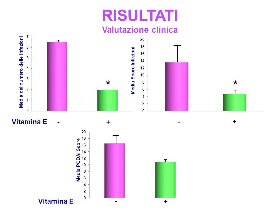 RISULTATI Valutazione clinica Vitamina E - + Media del numero delle infezioni Media Score Infezioni - + Media PCDAI Score Vitamina E - + **