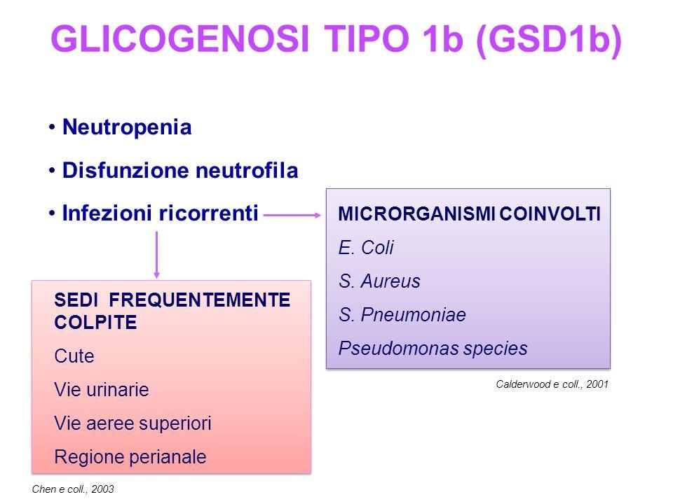 Neutropenia Disfunzione neutrofila Infezioni ricorrenti MICRORGANISMI COINVOLTI E.