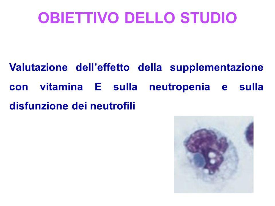OBIETTIVO DELLO STUDIO Valutazione delleffetto della supplementazione con vitamina E sulla neutropenia e sulla disfunzione dei neutrofili