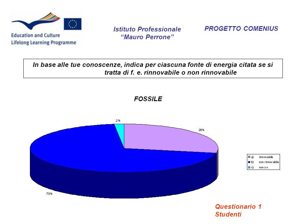 PROGETTO COMENIUS Secondo te, quali differenze ci sono tra energia rinnovabile ed energia non rinnovabile.