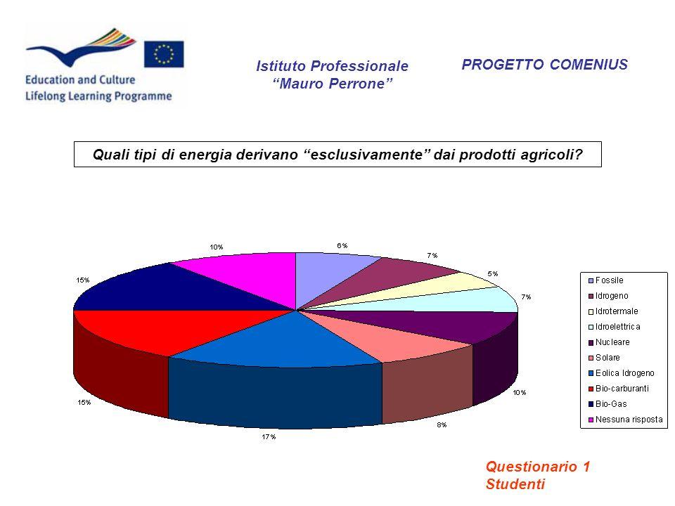 PROGETTO COMENIUS Quali tipi di energia derivano esclusivamente dai prodotti agricoli? Istituto Professionale Mauro Perrone Questionario 1 Studenti