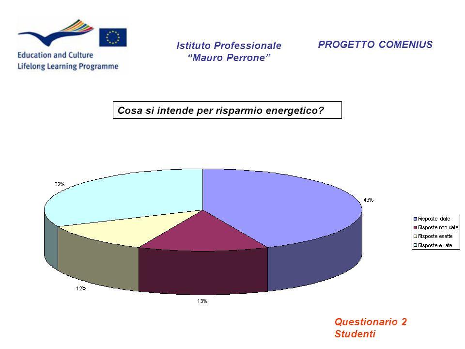 PROGETTO COMENIUS Cosa si intende per risparmio energetico? Istituto Professionale Mauro Perrone Questionario 2 Studenti