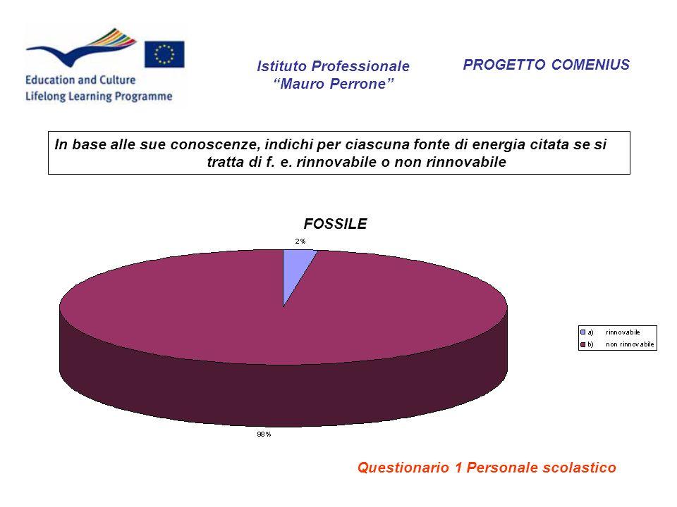 PROGETTO COMENIUS FOSSILE Istituto Professionale Mauro Perrone In base alle sue conoscenze, indichi per ciascuna fonte di energia citata se si tratta